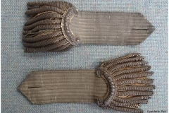 Epaulette-Pair-upperside