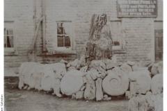 Fossil_Coll_Bath_Stone_Co-P502-76