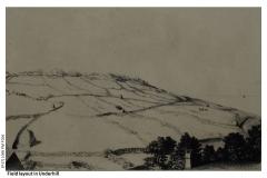 Fields_in_Underhill