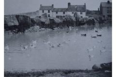 60_21-Weston_Pond-c1905